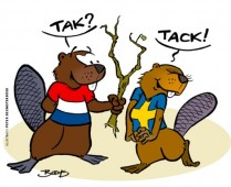 Zweedse Taal